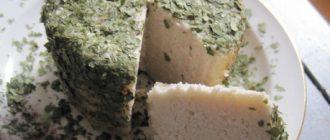 Веганский сыр из орехов макадамии