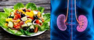 вегетарианство и болезни почек